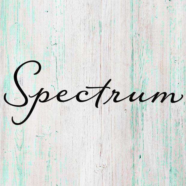 Spectrum Hair Studio Inc. Logo