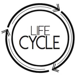 LifeCycle Spin Studio Logo